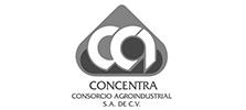 concentra